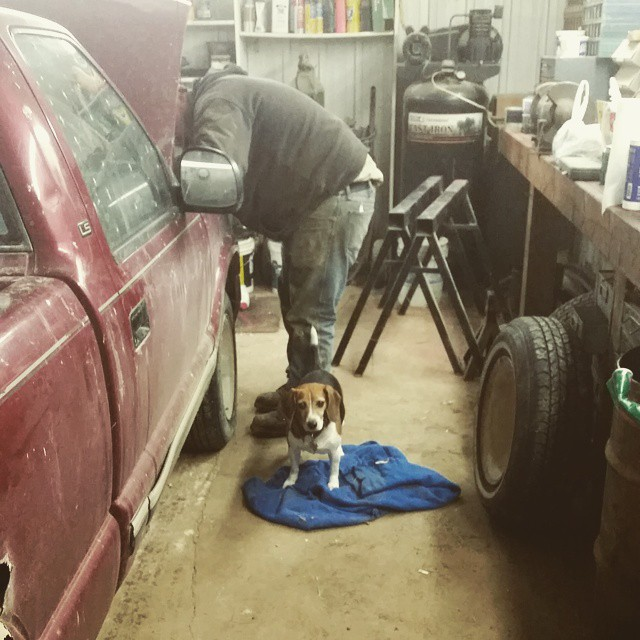 Best part of the new house? A heated shop so that Jason can fix the truck and me and Puppycat can visit when I need a break from homework! #joscountryjunction  #farmerswife