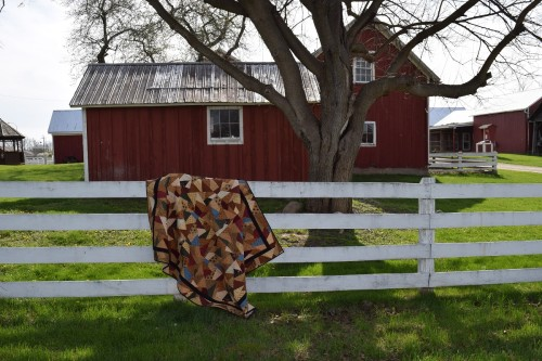 charity quilt 5