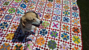Garden Party is FINISHED!! | Jo's Country Junction : garden party quilt pattern - Adamdwight.com